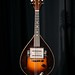 Vega Electric Mandolin, Sn. 38 458, ca. 1936