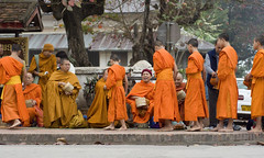 people, temple, religion, monk, person,