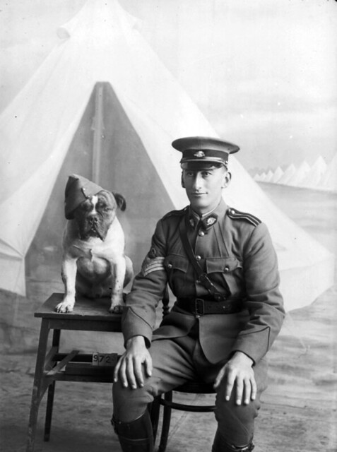 Staff Sergeant Major Morgan And Dog 1915 Flickr Photo