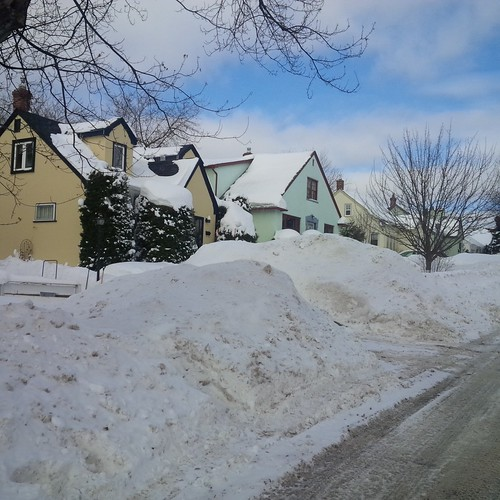 Snow-covered yards and a freshly-plowed street back home