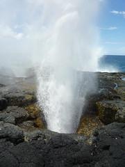 water, sea, blowhole, body of water, geyser, coast, rock,