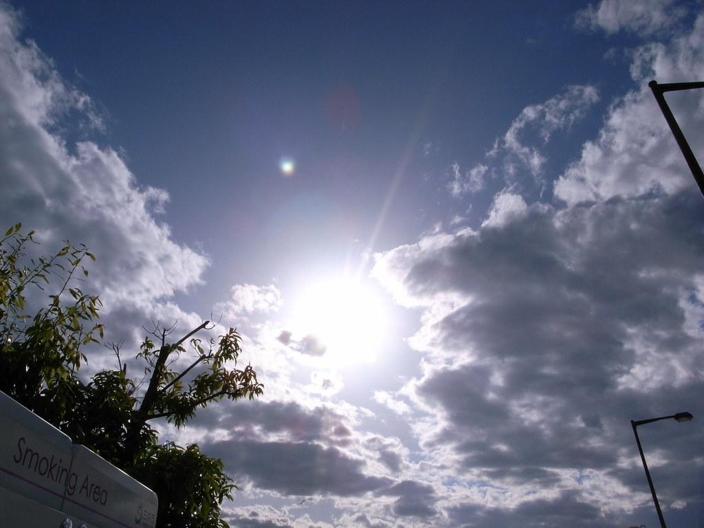 Dazzling sunlight