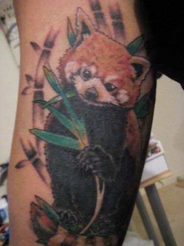 Red Panda Tatoo