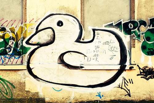 duck equations