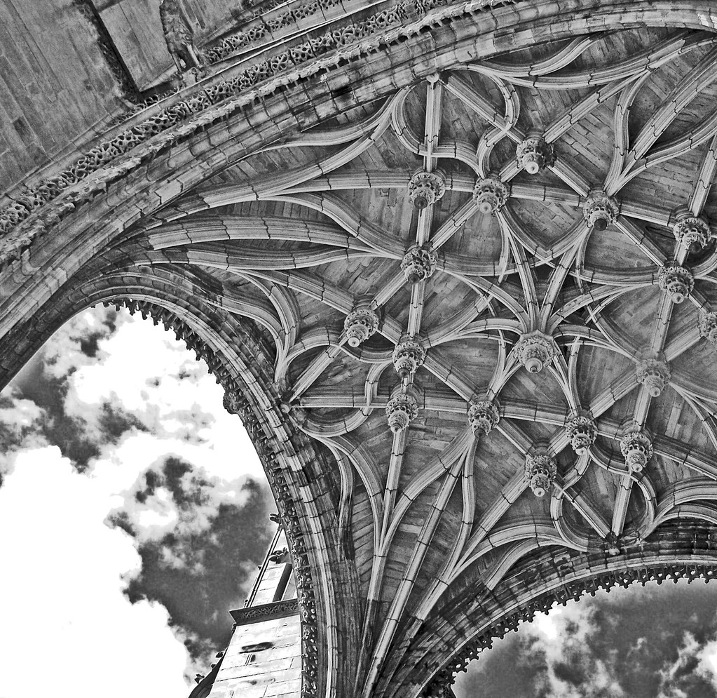 Detail Albi cathedral, France (2008)