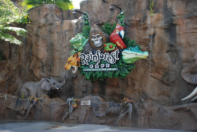 Rainforest Cafe Downtown Disney Telephone Number