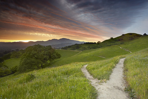 california travel wallpaper sky usa cloud nature grass self sunrise canon landscape interestingness oak lafayette path hill dirt bayarea 5d canon5d eastbay diablo walnutcreek mtdiablo concord oaktree pleasanthill mkii srf goldenstate 1740l baytree contracosta realization intestingness contracostacounty 5dmkii