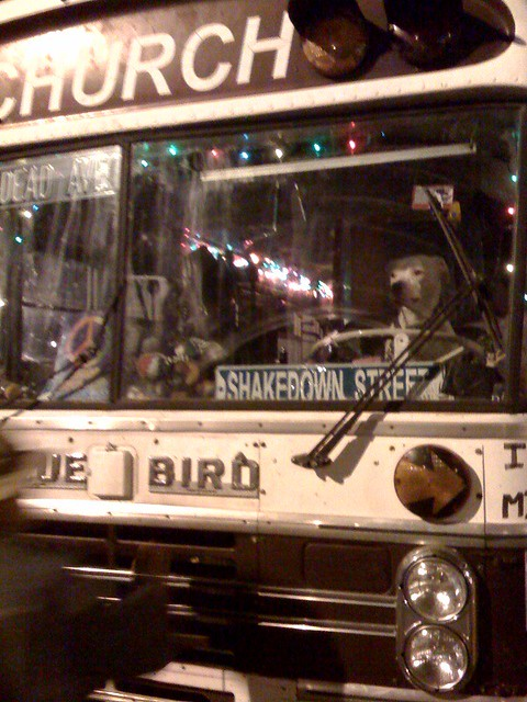 A dog driving a bus named church. Ever since he had seen this image of a dog driving a bus, Sherlock wanted to drive a bus.
