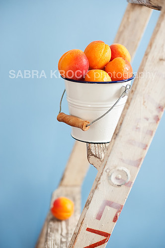 apricots on ladder 9177