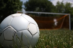 ball, grass, football, net, ball, football,