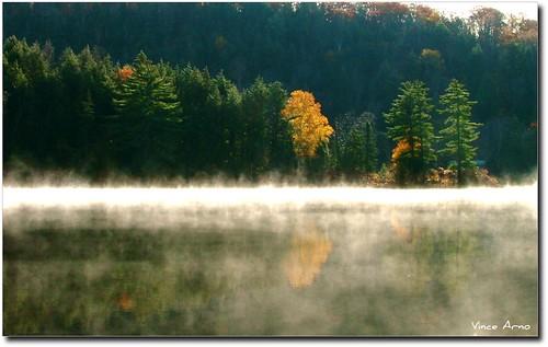 park ontario canada automne eau algonquin reflexions soe forêt bois platinumphoto aplusphoto overtheexcellence goldstaraward vanagram
