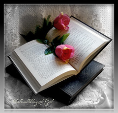Take Time To Smell the Roses and Read a Book~~~I wish~~:):)