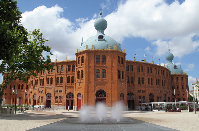 campo pequeno flickr photo sharing
