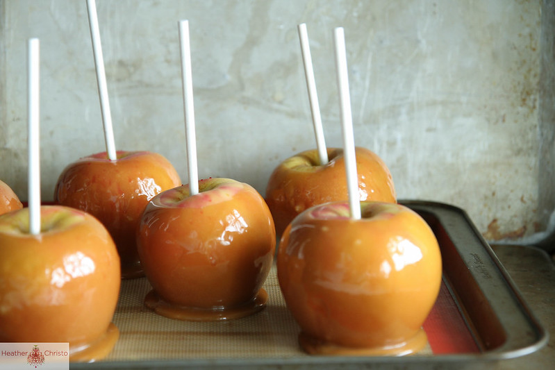 Salted Vanilla Caramel Chocolate Apples