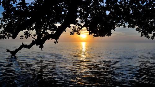 india reflection silhouette sunrise bayofbengal touristdestination havelockisland andamanandnicobarislands nikond3100