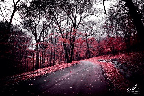 red white black color landscape cool view colorvibefilter