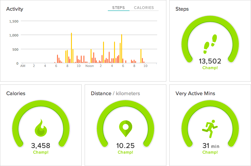 Fitbit day