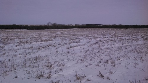 snow on wheat stubble, 2/6/14