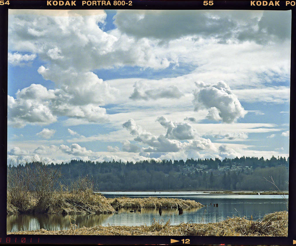 Kodak Portra 800 2.jpg
