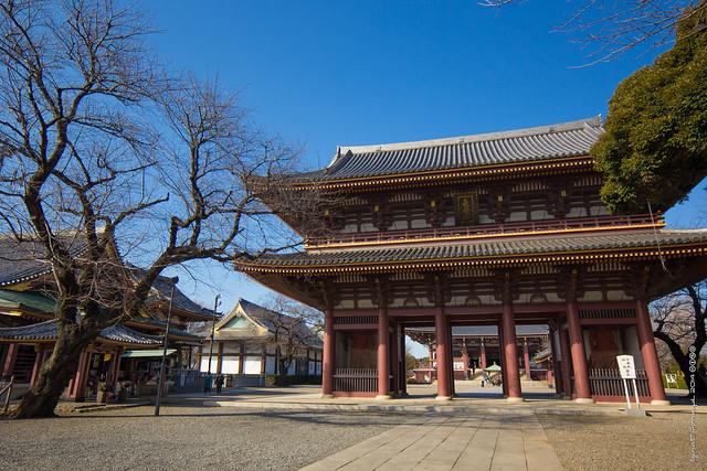 Ikegami Honmonji 池上本門寺