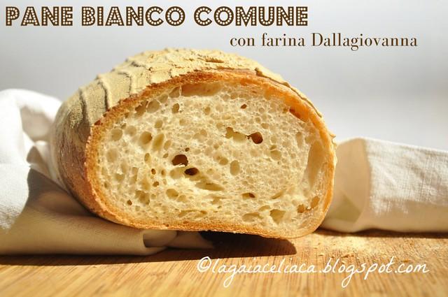 Pane bianco comune con farina Dallagiovanna