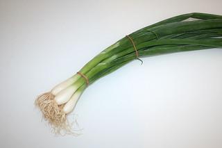 01 - Zutat Frühlingszwiebeln / Ingredient spring onions