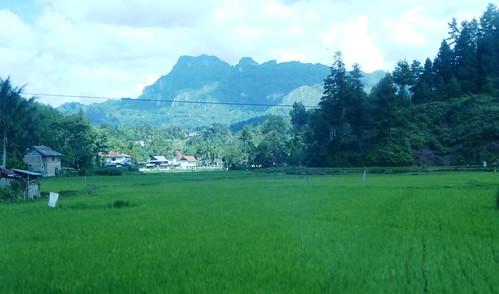 Makale-Makassar-Bus 1 (5)