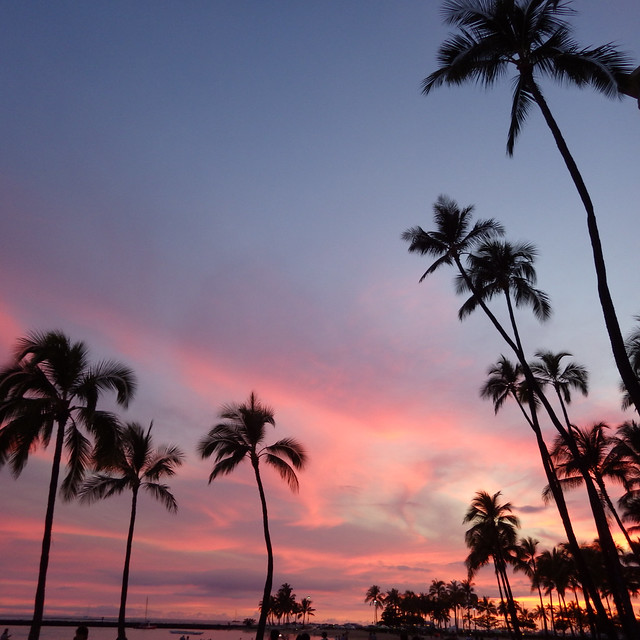 Oahu - hale koa hotel area