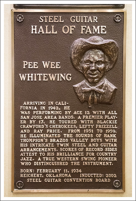 Pee Wee Whitewing