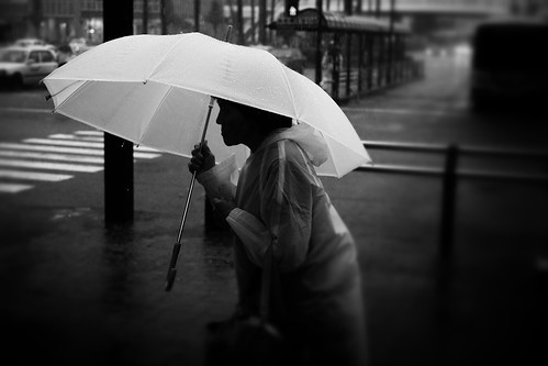 White Umbrella. by daveweekes68