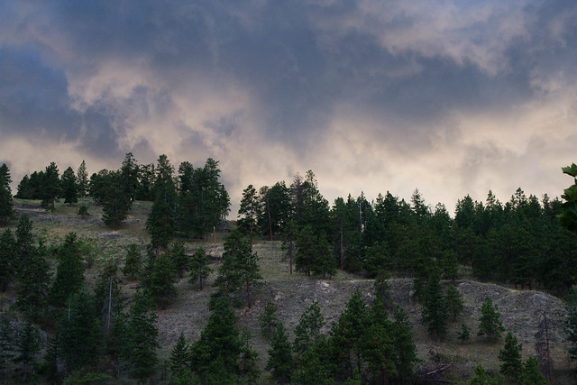 A Storm is Coming | Peachland, Canada