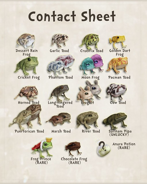 Beetlebones Wizarding Frogs & Toads Gatcha