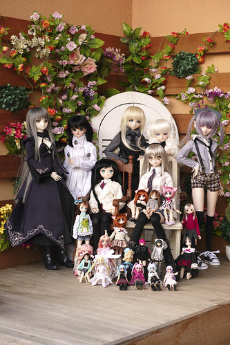 All members Doll