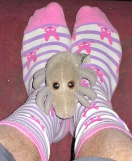 Dust Mite & Bunny Socks