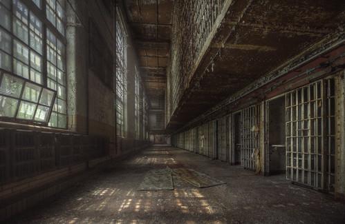 The walking dead  ( explore )