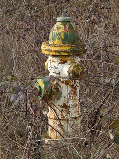 Rusty Fire Hydrant ~ Yellow/Orange, Pale Yellow & Green