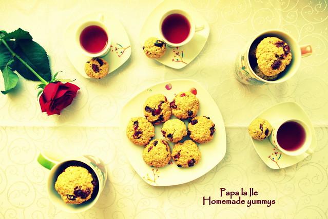 Biscuiți de ovaz cu merișoare... poze (9)