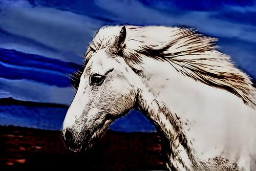 White Horse by L1Comics