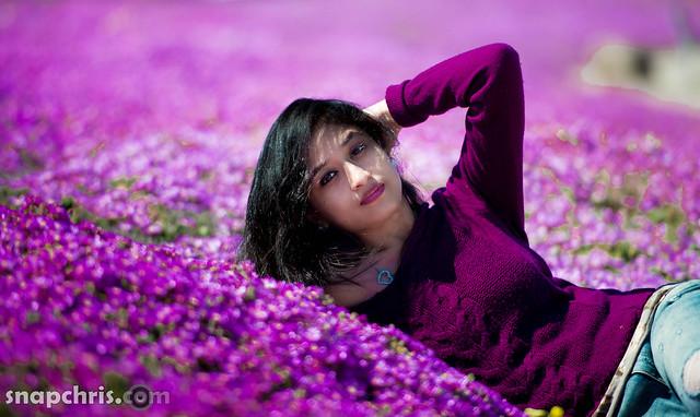 Beautiful Indian girl in Purple Blooms