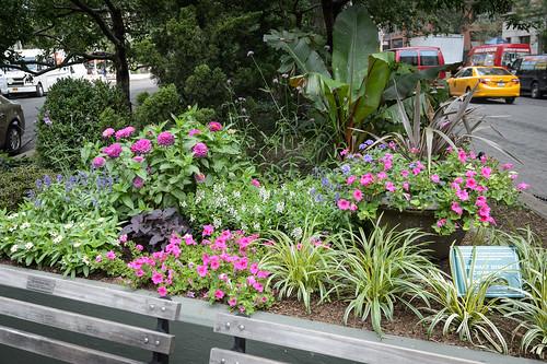 FilipWolak-LSBID-Gardens-8315
