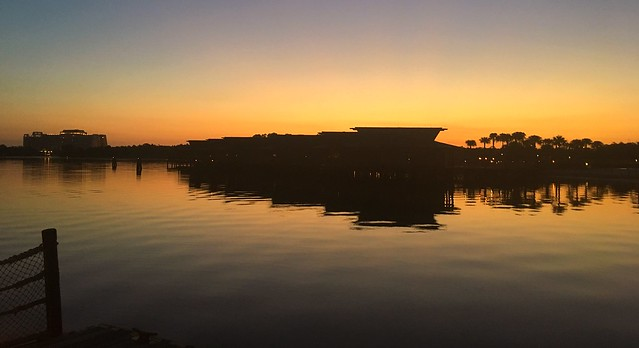 Golden Florida