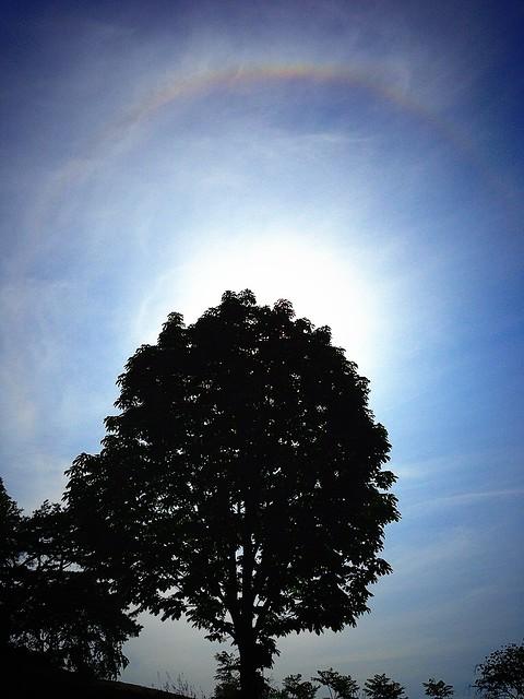 Photo:太陽の周りに虹が見える