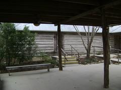 San Antonio Botanical Gardens (38)