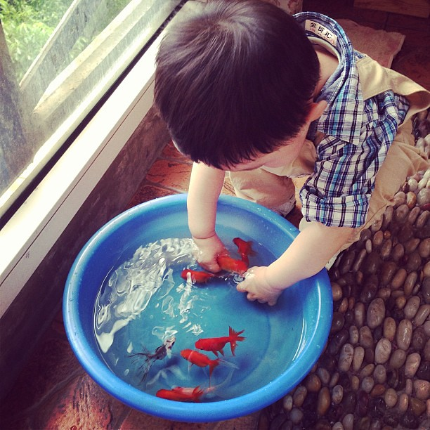 #boy #poorfish #son