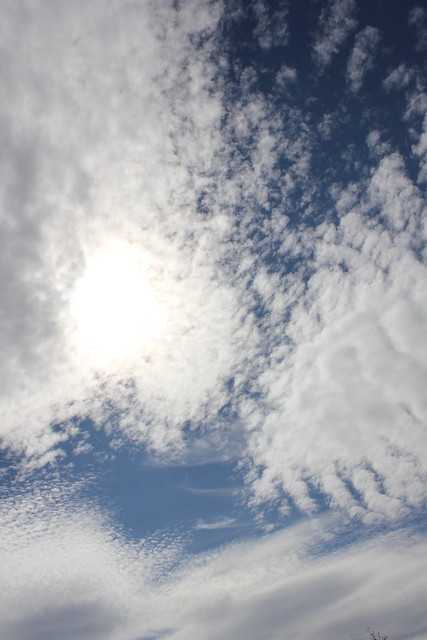 Oregon Skies by SequoyahBlu