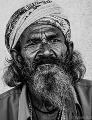 Portrait - Old Age