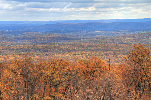 statepark nature landscape sussex newjersey scenery highpoint sussexcounty