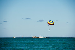 surface water sports, sports, sea, parasailing, ocean, windsports, extreme sport, water sport,