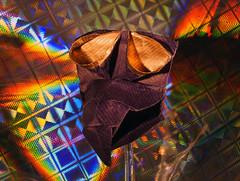 Origami - Robin Glynn