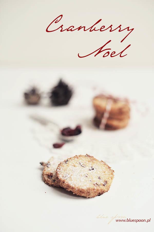 cranberry noel - sprawdzony przepis